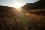 East Chopaka Grasslands, South Okanagan, British Columbia, BC, Graham Osborne